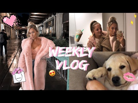 WEEKLY VLOG | SISTER DAY, HERBIE AT THE VETS, HOUSE UPDATE, DATE NIGHT!
