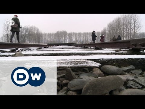 Auschwitz survivors return to face the past | Journal Reporter