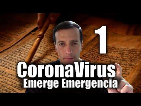 CoronaVirus Profecias Covid 19 ~ Los 4 Jinetes del Apocalipsis ~ Jose Luis Parise