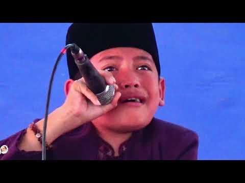 Kori cilik Asal pandeglang BANTEN INDONESIA# di pon pes darussalam pandeglang