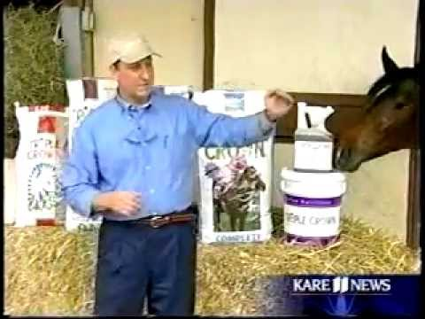 Triple Crown Horse Feed and Funny Cide - KARE 11 News