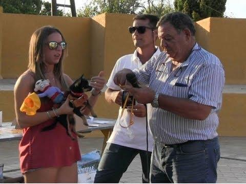 Entrega de Premios y Trofeos Concurso Canino de Isla Cristina