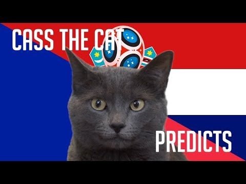 France vs Croatia | 2018 World Cup Final | Cass the Cat Prediction