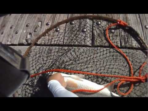 Spanish Mackerel & Red Drum – Pensacola Beach Pier