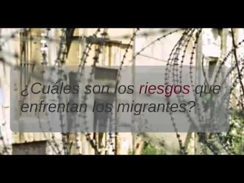 Migración un fenómeno global