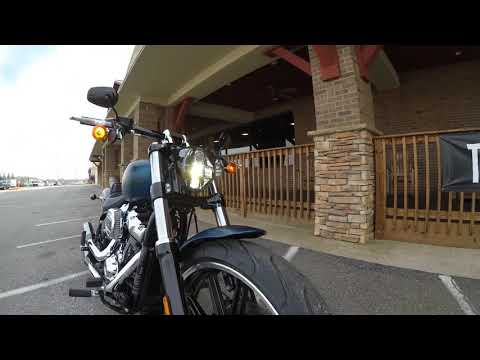 2018 2018 115th Anniversary Softail Breakout