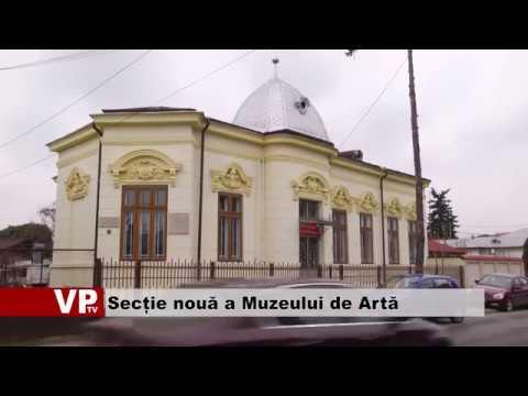 Secție nouă a Muzeului de Artă