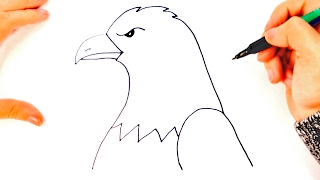 How to draw a Eagle for kids  Eagle Drawing Lesson Step by Step