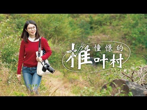 憧憬的椎叶村(中国語)