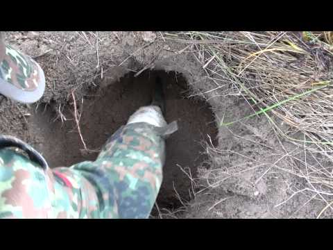Видеоматериал о находке клада