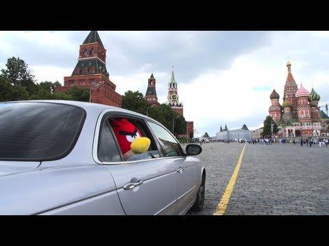 Angry Birds в россии
