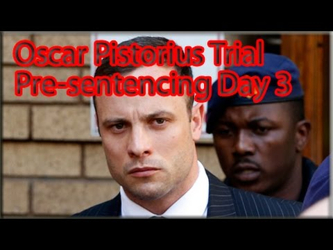 Arguments - Paralympian Oscar Pistorius's probation officer, Anette Vergeer, will return to the witness stand in the North Gauteng High Court in Pretoria on Wednesday for the final day of evidence in mitigatio...