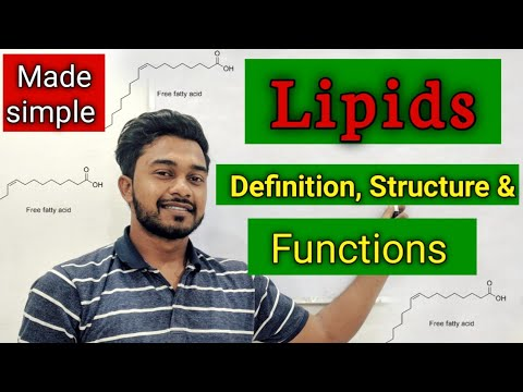 Lipids | definition and structure | classification of lipids | lipids full lecture