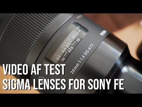 Is the VIDEO AUTOFOCUS Reliable?! - Sigma Art Lenses for Sony a7III a7RIII a9