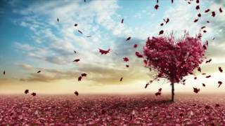 Video Tu Mera hai Sanam | Lyrical Video | download in MP3, 3GP, MP4, WEBM, AVI, FLV January 2017