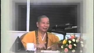 VÔ LƯỢNG PHÁP MÔN - HT THÍCH TRÍ QUẢNG thuyết giảng ngày 19.05.2003 (MS 315/2003)