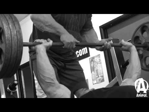 mcgrath - Animal presents a never-before-seen video featuring two bodybuilders training together for the first time, IFBB Pros Frank McGrath and Evan Centopani. In thi...