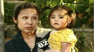 Alerta por plaga en el Valle de San Gabriel - Thumbnail