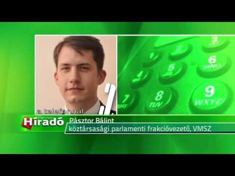 Pásztor Bálint: Esély, hogy megoldjuk a magyarság számára jelentős ügyeket-cover