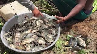 KH Fishing -Top 10 Viral Video 2017  AMAZING Net Fishing Cambodia  Top10 Cambodia Traditional Fishing