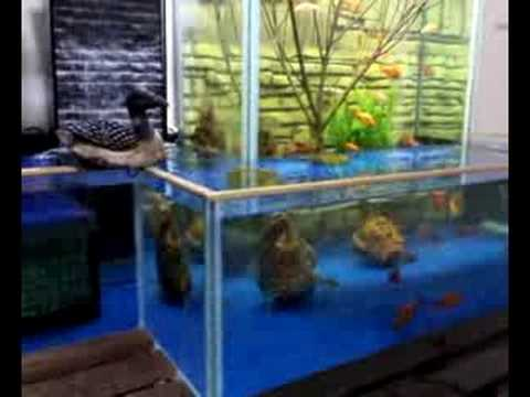 FISH TANK OPEN BOTTOM