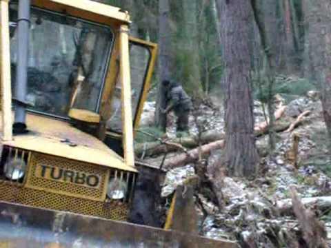 praca w lesie:lkt 81turbo & ursus 1014:  praca w lesie