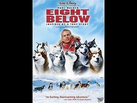Opening To Eight Below 2006 DVD