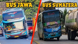 Video 6 Perbedaan BUS JAWA & BUS SUMATRA MP3, 3GP, MP4, WEBM, AVI, FLV Mei 2019