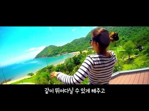 홍삼 바이럴 영상