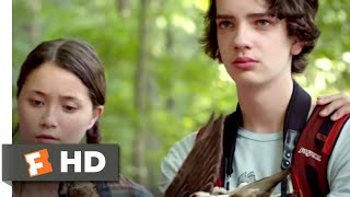 Nonton A Birder's Guide to Everything (2013) - You Shot An Extinct Duck Scene (10/10) | Movieclips Film Subtitle Indonesia Streaming Movie Download