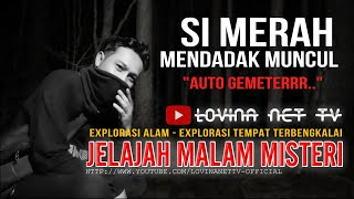 Video #19 mendadak muncul, Kedatangan si merah bikin cameraman panik - Lovina Net TV MP3, 3GP, MP4, WEBM, AVI, FLV September 2019