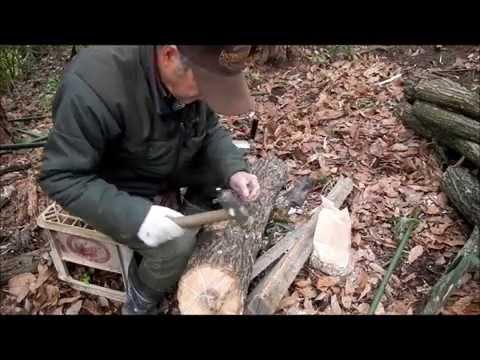 椎茸(しいたけ)原木への植菌と仮伏せ