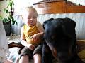 Enlace a ¿Razas de perro agresivas y peligrosas, no?