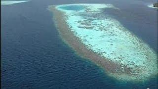 1er janvier 2008 En forme d'oeuf sur le plat, de croissant de lune ou de torchon, les atolls des Maldives ignorent la monotonie.