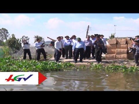 Khẩn trương tìm giải pháp chống hạn, xâm nhập mặn | HGTV