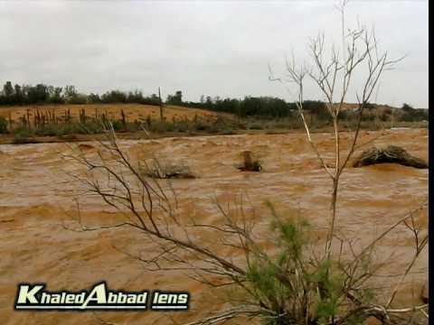 شعيب وادي الرمة في عنيزة(4)