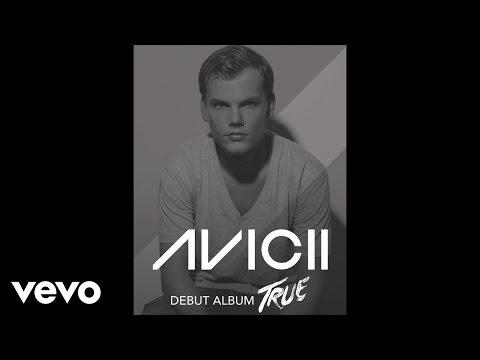 Avicii - Home There's Someone lyrics