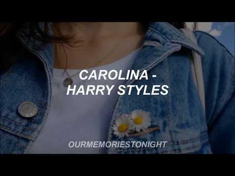 harry styles - carolina // lyrics