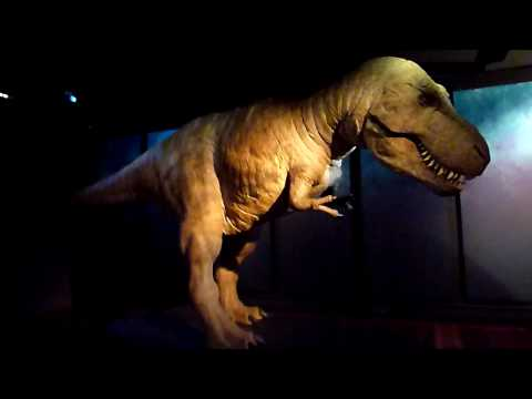 Air compressor hire for 'Dinosaurs Alive'
