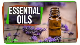 Do Essential Oils Really Work? And Why?