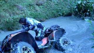 7. Arctic cat 1000 trv lol