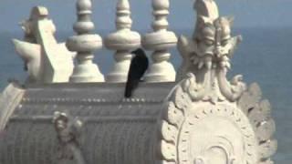 Tiruchendur India  city photos gallery : Thiruchendur Murugan Temple