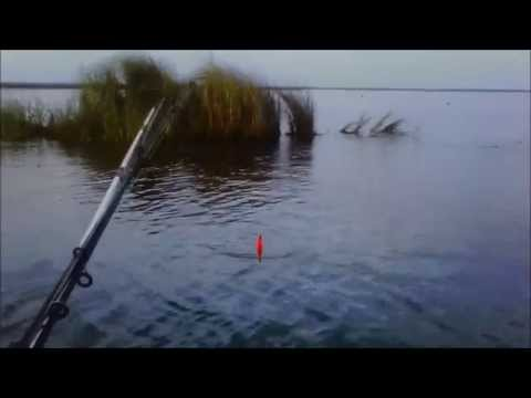 Canoe Fishing Lake Bornge: Sheepshead and Speckled Trout