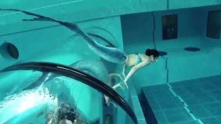Video Mermaid Show In World's Deepest Pool Y-40 MP3, 3GP, MP4, WEBM, AVI, FLV Mei 2019