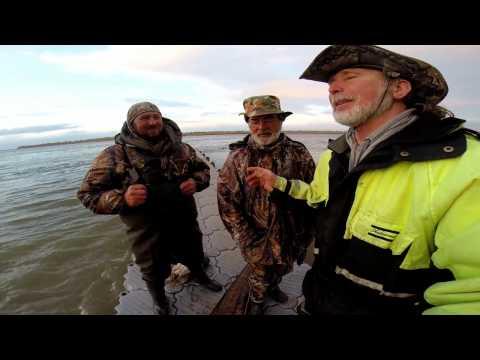 рыбалка в астрахани весной на что ловится сом