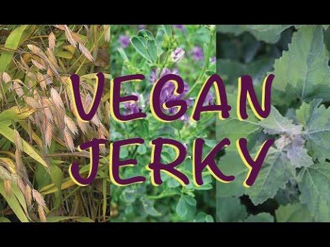 Vegan Jerky