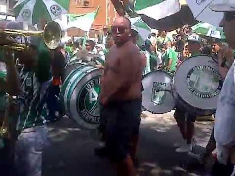 Septimo dia hincha verde - Los del Sur - Atlético Nacional