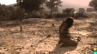Los orígenes de la Humanidad. (3/3) El amanecer del hombre