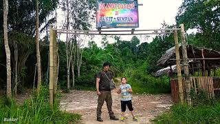 Video BUSHCRAFT INDONESIA #bushcrafthiking #bukit7sempan #hikinghoror         Pendakian horor dimalam hari MP3, 3GP, MP4, WEBM, AVI, FLV April 2019
