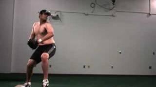 Biomechanics Evaluation of a Pitcher